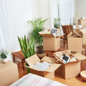 Why You Need Packers and Movers in Bangalore for Local Shifting